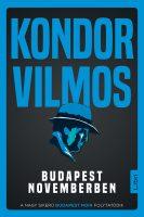 Könyv borító - Budapest novemberben